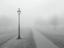 霧の中の街頭