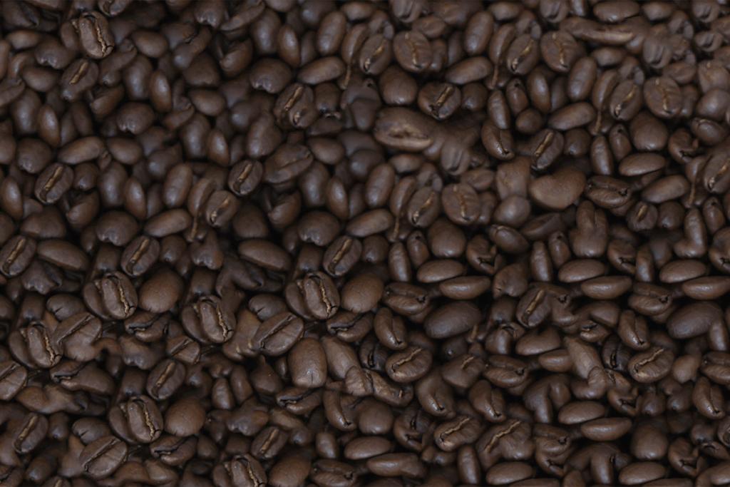 ゲイシャ コーヒー豆