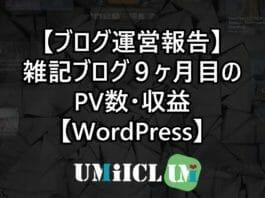【ブログ運営報告】雑記ブログ9ヶ月目のPV数・収益【WordPress】