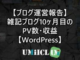 【ブログ運営報告】雑記ブログ10ヶ月目のPV数・収益【WordPress】