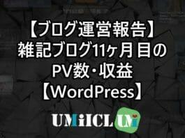 【ブログ運営報告】雑記ブログ11ヶ月目のPV数・収益【WordPress】