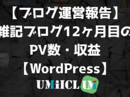 【ブログ運営報告】雑記ブログ12ヶ月目のPV数・収益【WordPress】